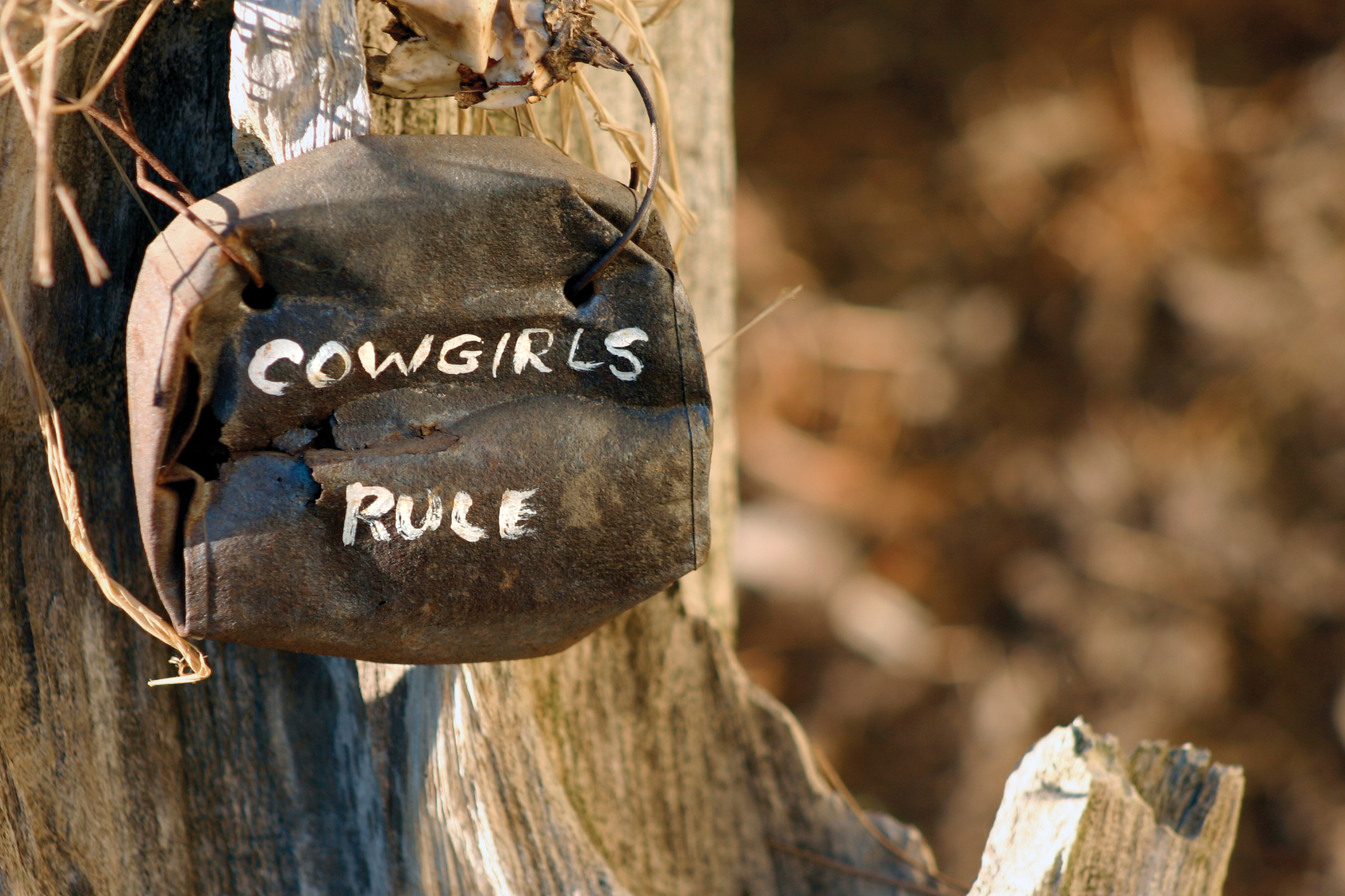 cowgirls-rule-dreamstime-m-2888137.jpg